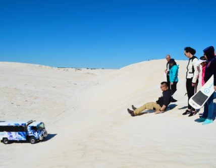 Full Day Pinnacles, Lobster Shack, Lancelin 4WD & Yanchep Tour
